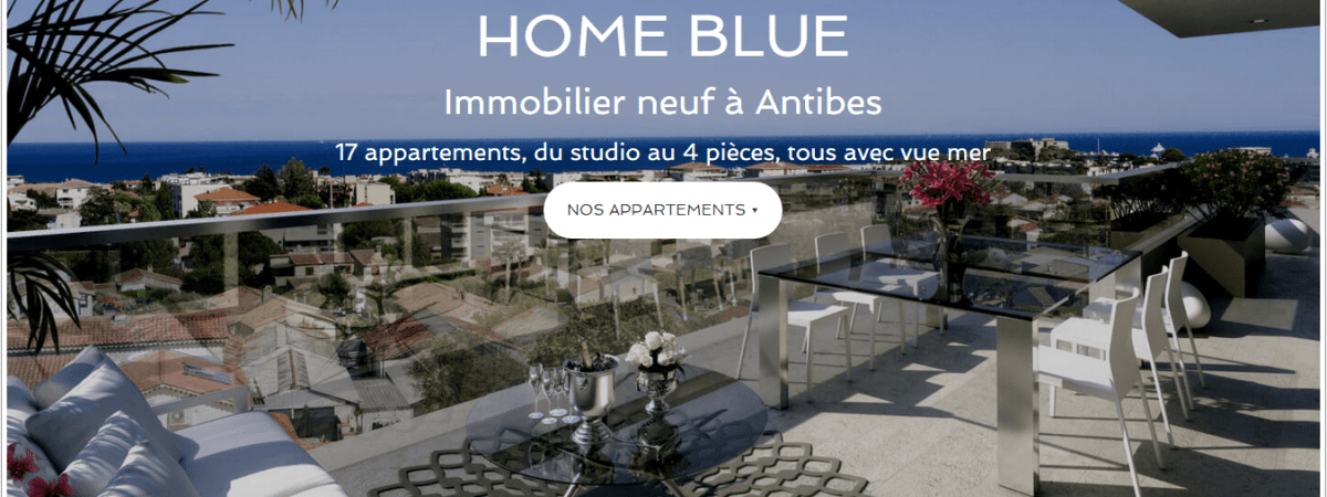 Exemple de site immobilier professionnel